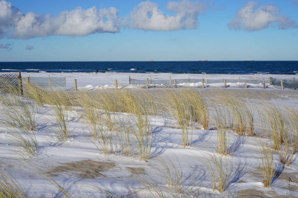 Strahlende Wintereindrücke aus Warnemünde Strand im Winter mit Strandgras